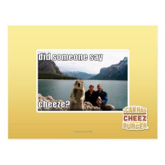 Did someone say cheeze? postcard