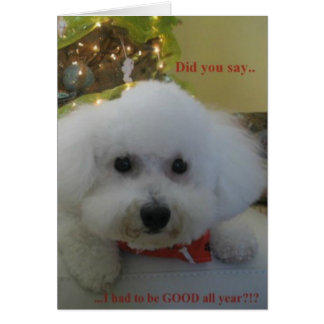 """Did you say I had to be GOOD all year?"" Greeting Card"