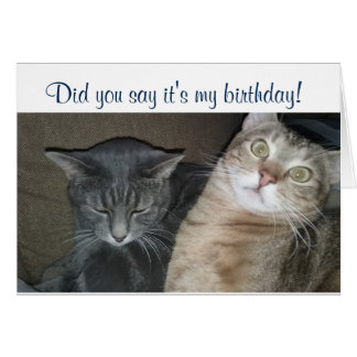 Did you say it's my birthday card