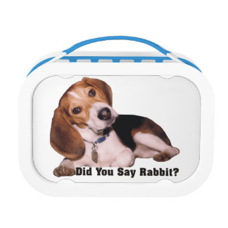 Did You Say Rabbit? Beagle Lunch Box