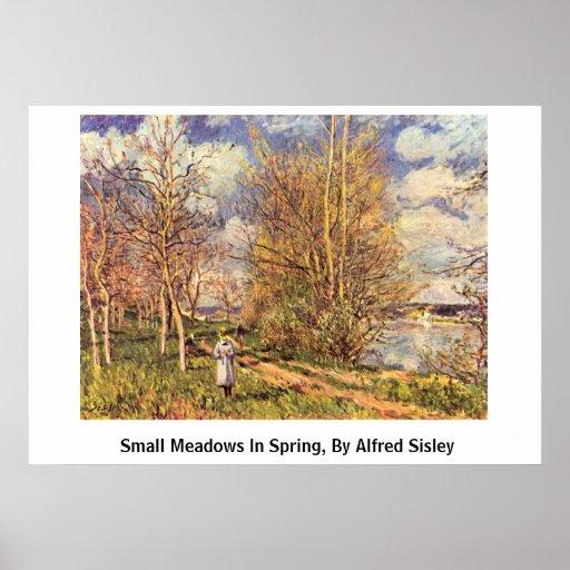 Die Small Meadows In Spring, By Alfred Sisley