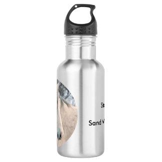 Diego 532 Ml Water Bottle