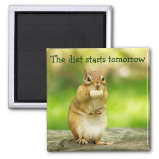 Diet Starts Tomorrow Chipmunk Magnet
