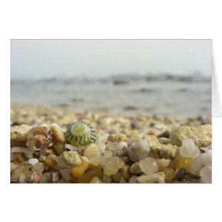Difference - Shell and Pebbles at the beach Greeting Card