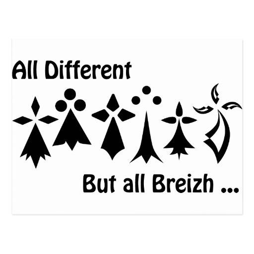 Different Al drank Al Breizh Brittany Postcard
