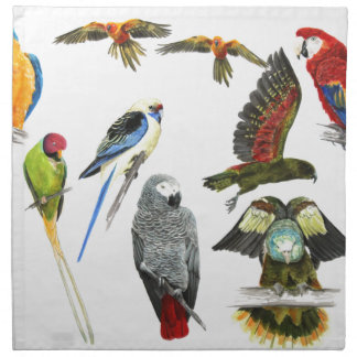 Different types of parrot gift for the parrot love napkin