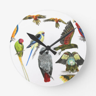 Different types of parrot gift for the parrot love round clock