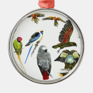 Different types of parrot gift for the parrot love Silver-Colored round decoration