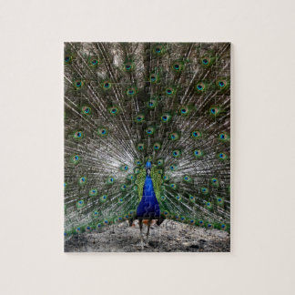 Difficult puzzles gifts peacock feathers puzzle