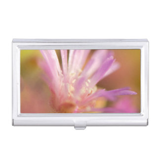 Diffused Image Of A Colorful Succulent Flower Business Card Holder
