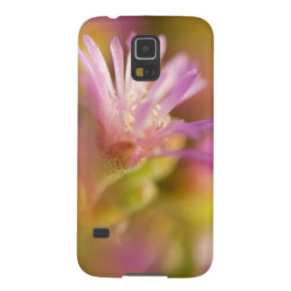 Diffused Image Of A Colorful Succulent Flower Case For Galaxy S5