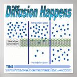 Diffusion Happens