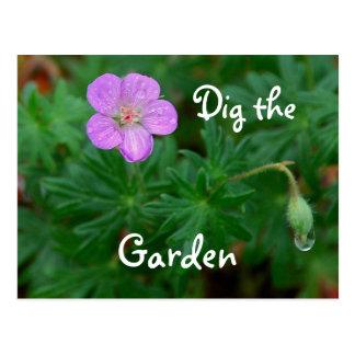 Dig the Garden Cranesbill Postcard