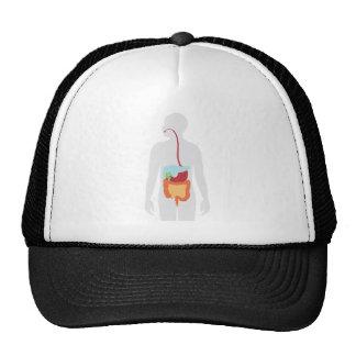Digestive System Trucker Hat
