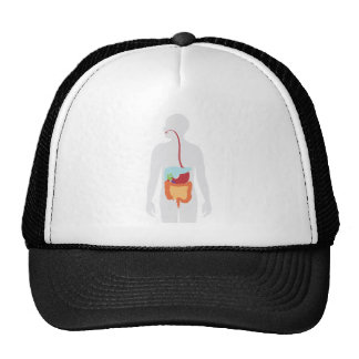 Digestive System Hat