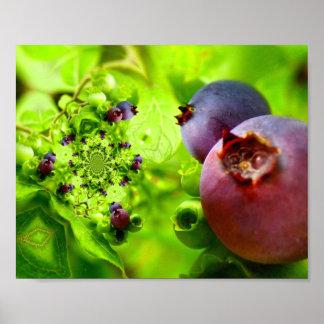 Digital Art Blueberries Print