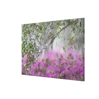 Digital Composite of Azaleas and magnolia tree Canvas Print