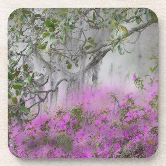 Digital Composite of Azaleas and magnolia tree Coaster