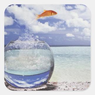 Digital composition square sticker