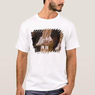 (Digital Enhancement) T-Shirt