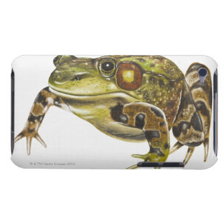 Digital illustration of Green Frog Barely There iPod Cases