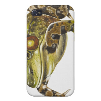 Digital illustration of Green Frog iPhone 4 Covers