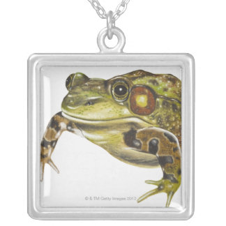 Digital illustration of Green Frog Silver Plated Necklace