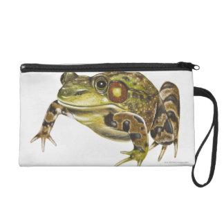 Digital illustration of Green Frog Wristlet