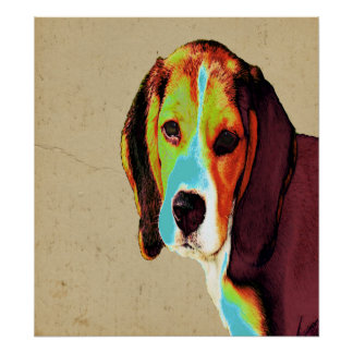 Digitally Colored  Beagle Posters