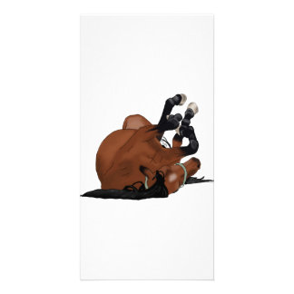 Digitally Drawn Bay or Brown Horse Rolling on Back Photo Card Template