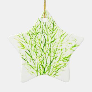 Dill herbs Dill watercolour Ceramic Star Decoration
