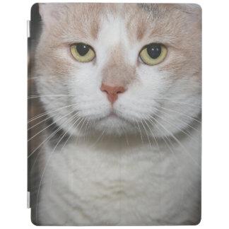 DILUTE CALICO CAT IPAD CASE iPad COVER