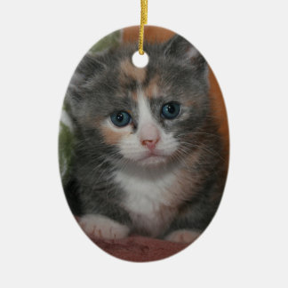 DILUTE CALICO KITTEN ORNAMENT