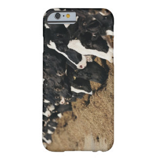 Diminishing Perspective of Cow's Heads Grazing Barely There iPhone 6 Case