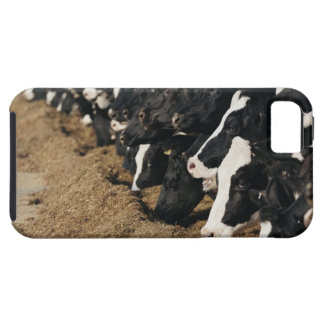 Diminishing Perspective of Cow's Heads Grazing Tough iPhone 5 Case