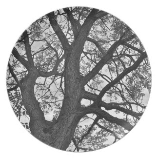 """Dining Plate, 10"""" diameter, Tree design Party Plates"""