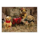 Dinky Bears: Farmer Kids