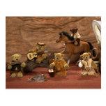 Dinky Bears: Wild West Life