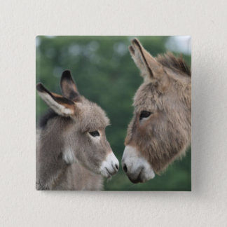 Dinky donkey 15 cm square badge