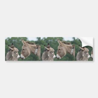Dinky donkey bumper sticker