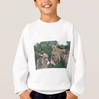 Dinky donkey sweatshirt