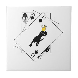 Dino Cards Small Square Tile