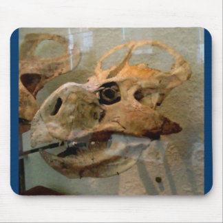Dino Skull Oil Painting Mouse Pad