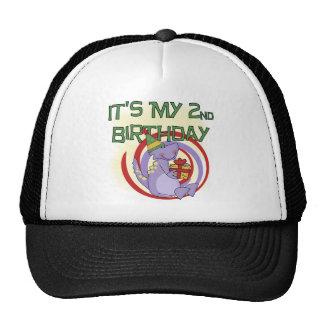 Dinosaur 2nd Birthday Tshirts and Gifts Cap