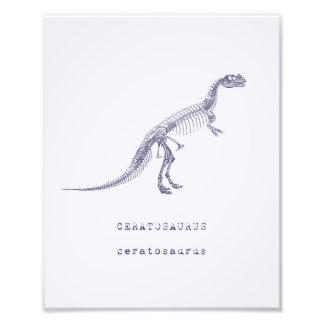 Dinosaur Art Photo