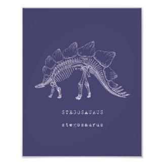 Dinosaur Art Photo Art
