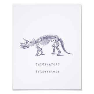Dinosaur Art Photograph
