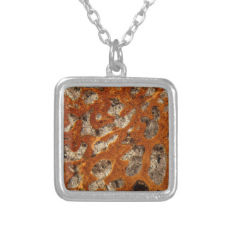 Dinosaur bone under the microscope silver plated necklace