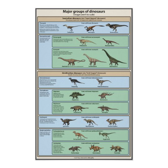 Dinosaur Classification Simplified Poster