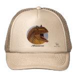 Dinosaur Hat Allosaurus Portrait Gregory Paul